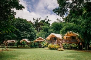 Glamping amidst nature